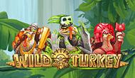Игровой автомат Wild Turkey от Максбетслотс - онлайн казино Maxbetslots